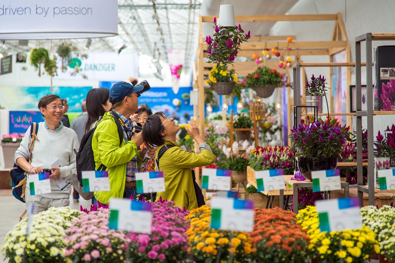 FlowerTrials 2018 inside