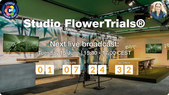 Studio FlowerTrials