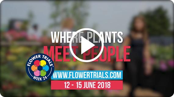 FlowerTrials Trailer