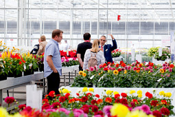 Beekenkamp Plants BV - GREENHOUSE PRESENTATION
