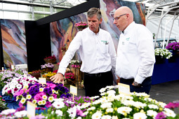 Schneider youngplants - Flower Trials 2018 - Schneider youngplants