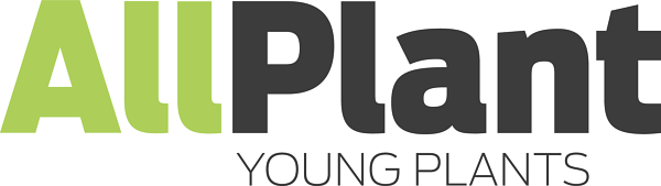AllPlant Young Plants
